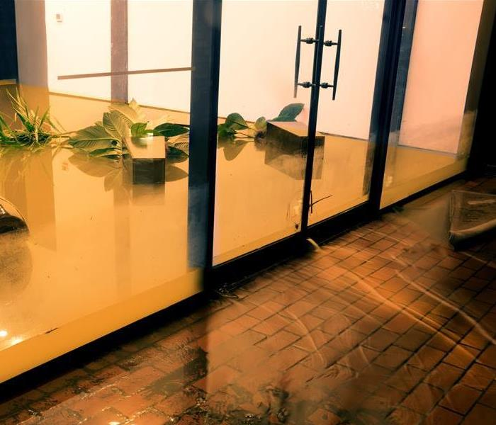 A room in a home with glass walls with standing dirty water.