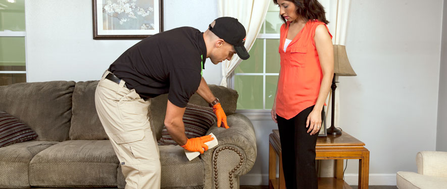 Millbrook, NY carpet upholstery cleaning